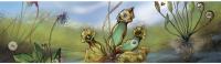 Tourbières & plantes carnivores