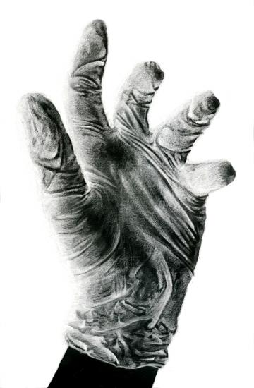 Mains laurine moreau illustration scientifique - Main dessin crayon ...