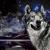 Photomontage kitch avec galaxy, un lac et un loup, réaliste et hipster.