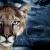 Photomontage kitch avec un paysage de la galaxie, un orage et un tigre, réaliste et dramatique.