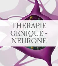 thérapie génique -neurone
