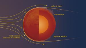 """Mars ne semble plus avoir un tel phénomène d'induction électromagnétique et de magnétosphère, cependant cela était sûrement différent au début de sa vie. Les roches martiennes ont gardé dans leur structure une très forte rémanence électromagnétique (qui est l'équivalent du """"souvenir"""" de la magnétosphère dont aurait disposée Mars). Dans le passé, elle aurait donc connue une intense activité (chaleur, volcanisme, électromagnétisme...).  Néanmoins, le noyau martien est plus petit et moins dense que celui de la Terre, il s'est alors refroidi beaucoup plus rapidement. De nos jours, il semblerait être entre 800 et 2500°C ; tandis que celui terrestre fait plus de 4000°C. Cela est en partie dû au fait que le noyau martien est moins chargé en éléments radioactifs tel que le Fer. Ce dernier est resté en grande partie à la surface de Mars, du fait de sa gravité plus faible que celle de la terre, s'oxydant peu à peu, et donnant alors à la planète sa célèbre couleur rouge.  Ainsi, Mars n'est plus protégée des vents solaires et subit alors une forte érosion, une perte de matière dans l'espace. De la même façon, sa radioactivité moyenne est de 200 mSv/an, soit 100 fois plus que la moyenne terrestre et 10 fois plus que la limite santé admise."""